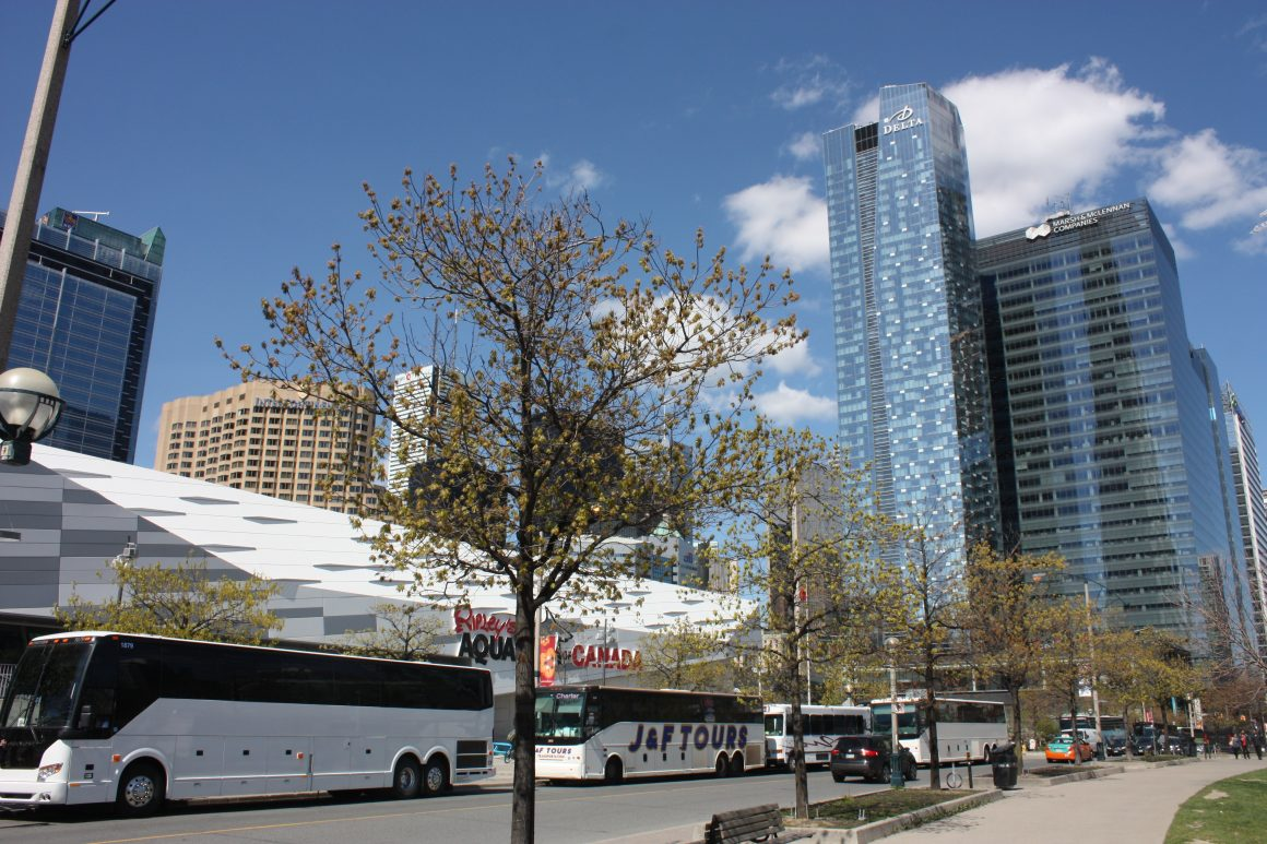 Tour Buses at the CN Tower